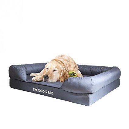 Pin On Dog File