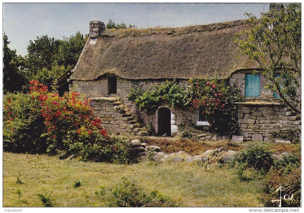 Chaumiere couverte en chaume dans le Morbihan, avant toute
