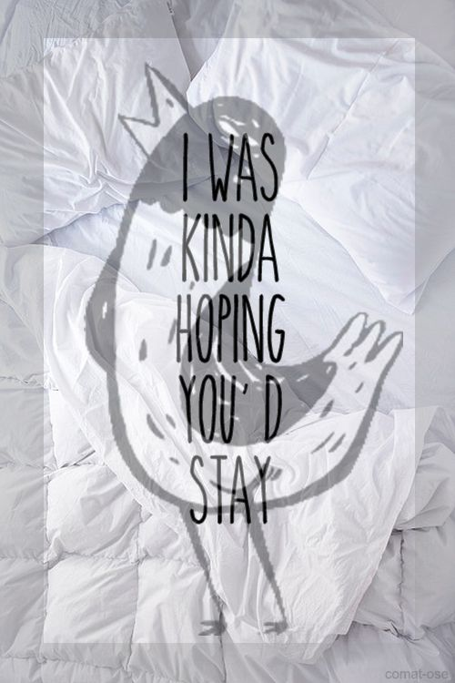 The Wonder Years – I Just Want to Sell Out My Funeral ... |The Wonder Years Lyrics Passing Through A Screen Door