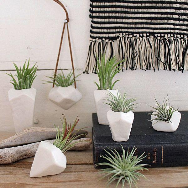 pflanzen pflege porzellan blumentöpfe für luftpflanzen   aerial ... - Pflanzen Für Badezimmer