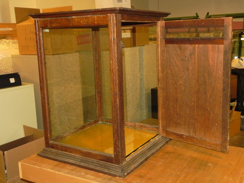 Antique Glass Wood Display Case Showcase Table Top Case Show Store Museum Wood Display Display Case Table Top Display Case