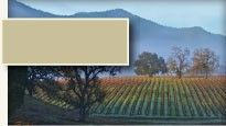 Ancient Peaks Winery - Paso Robles Tasting Room & zip lining