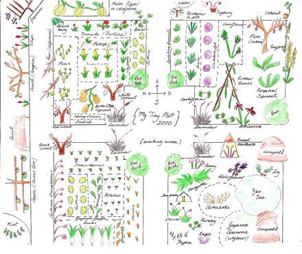 I Love This Plan Im Starting To Sketch One Very Similar For This - garden plot design ideas
