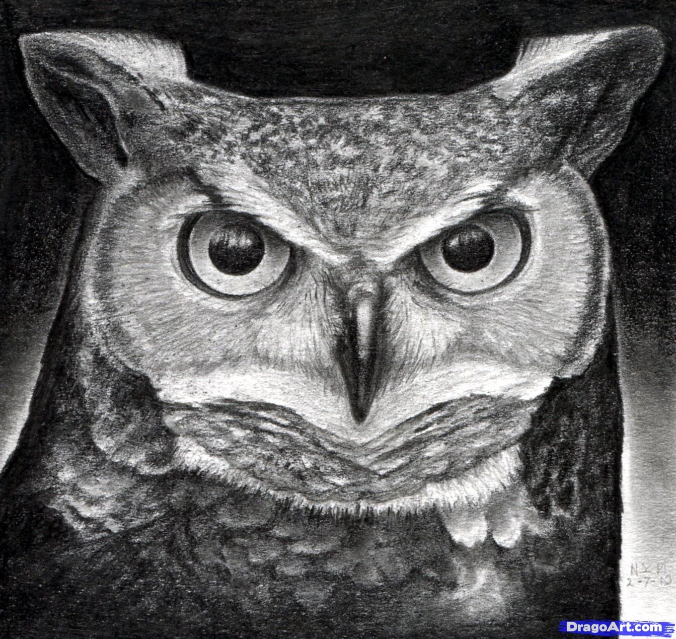 How to draw an owl: a master class