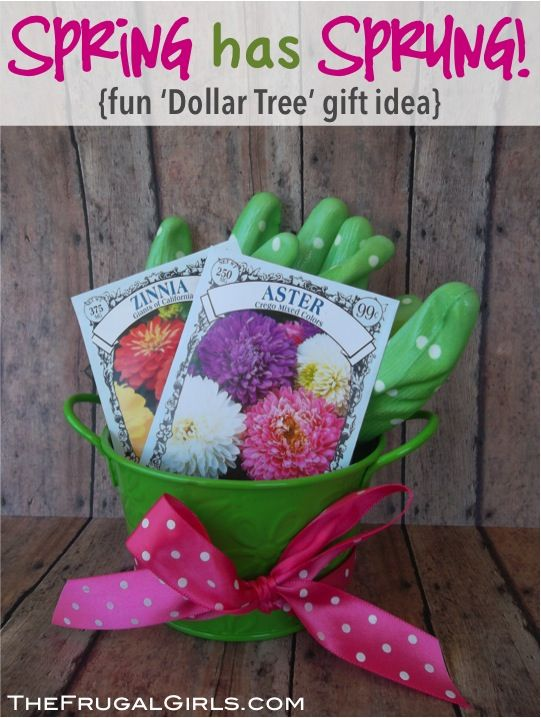 Sweet Little Gardening Gift Ideas For Your Favorite Gardener! ~ From  TheFrugalGirls.com #