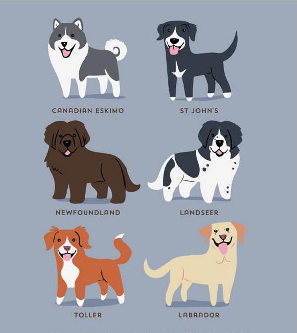 Los perros del mundo\