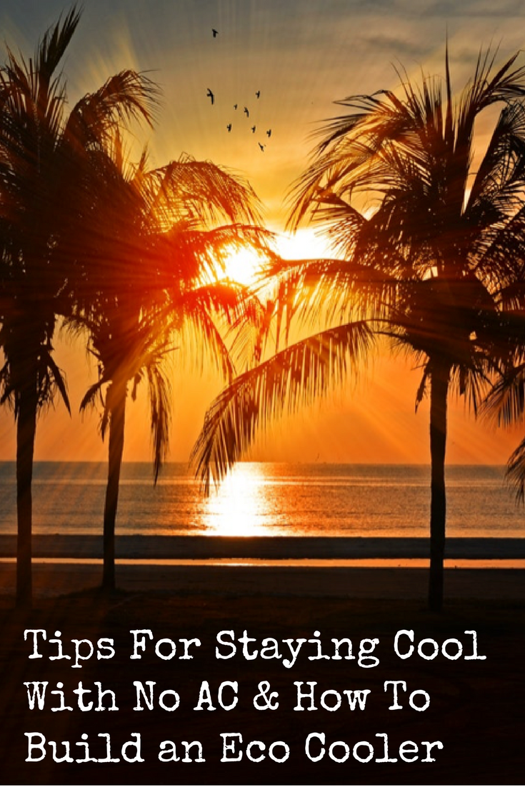 Tips For Staying Cool With No AC & How To Build an Eco Cooler | Backdoor Survival