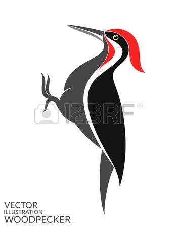 Vectores De Aves Pajaros Carpintero En 2020 Pajaros Aves Pajaros Carpintero Dibujo