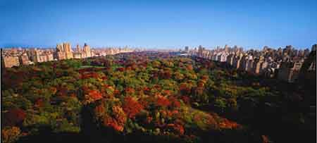Just steps from The Ritz-Carlton New York, Central Park are the striking lively colors of fall in Central Park.