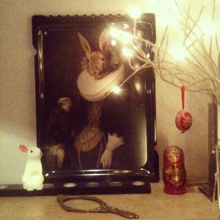 Poetic rabbit