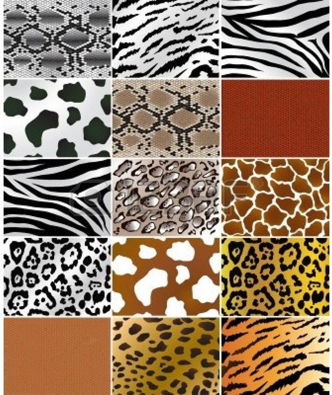 Animal Prints – From Retro till Date, A Never-Fading Fashion Trend ...