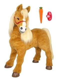 baby butterscotch pony