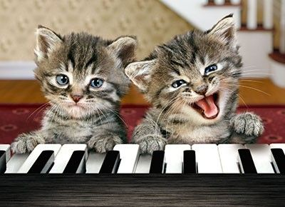You play and I will sing!