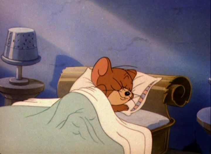 jerry the mouse - Hledat Googlem   Tom and jerry, Aurora sleeping ...