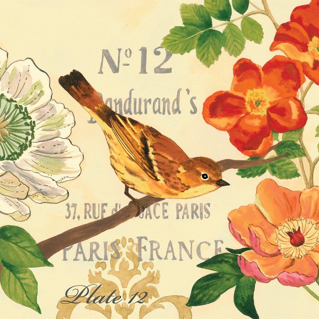 Jennifer Brinley - Bird Garden Poppy | Printout | Pinterest | Bird ...