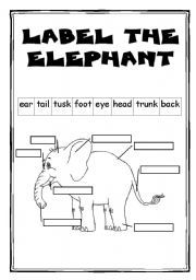 elephant FREE READING WORKSHEETS GRADE ONE - Google Search ...