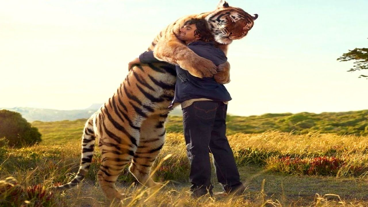Top 10 Unbelievable Animals That Saved People S Lives With Images