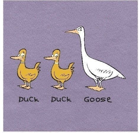 Look At These Animals One Of Them The Goose Is Pretty Different I Mean They Are Both Birds But Bird Wise They Are Pretty Different Anybo Duck Goose Life