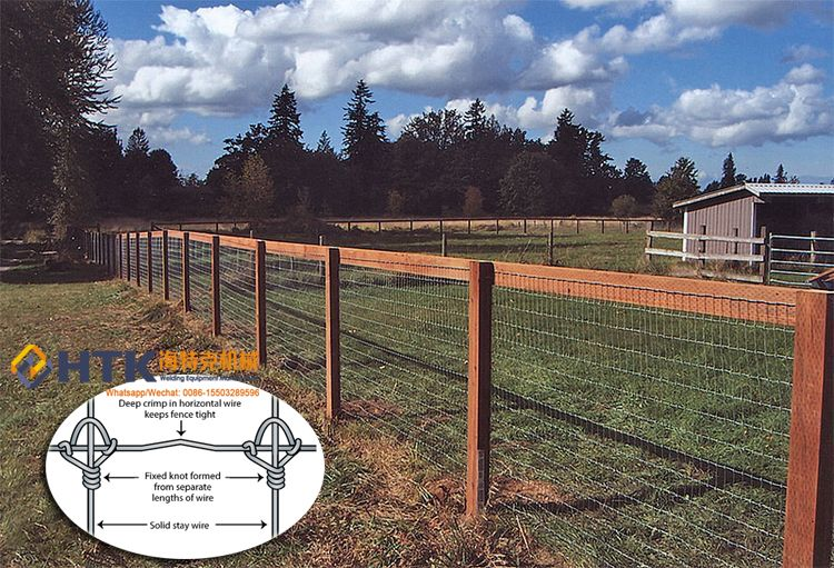 Fixed Knot Fence/Deer Fence/Field Fence Whatsapp/Mobile: 0086 ...