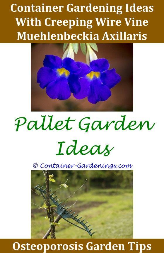 gargen backyard fruit garden ideas ideas for small garden containers decorating ideas for flower gardens small - Olive Garden Salary