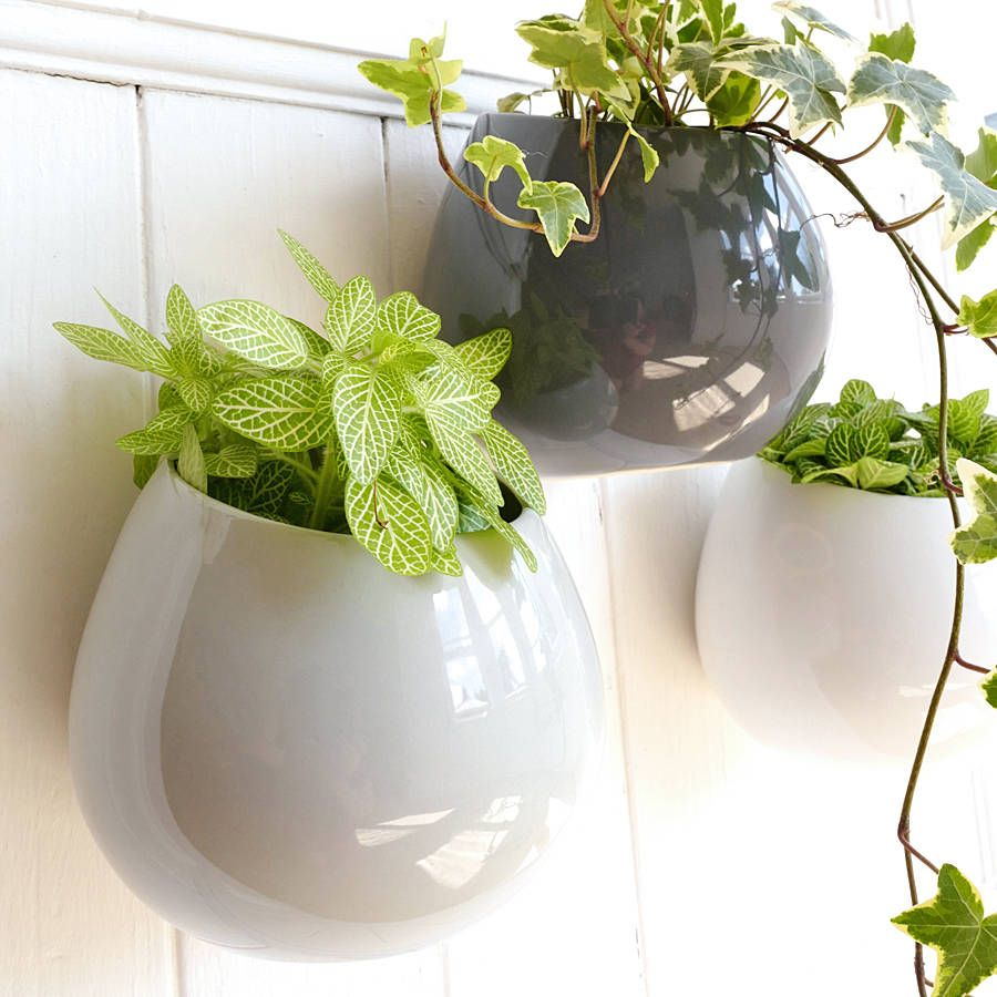 Ceramic Wall Hanging Plant Pot