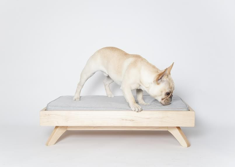 Modern Dog Beds from PUP  KIT