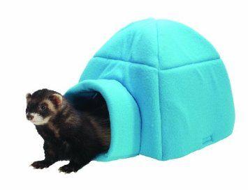Amazon Com Marshall Ferret Igloo Blue Fleece Pet Supplies Ferret Marshall Ferrets Pet Supplies