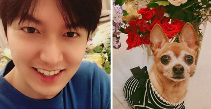 Lee Min Ho Thanks Fans In First SNS Post Following Military Discharge