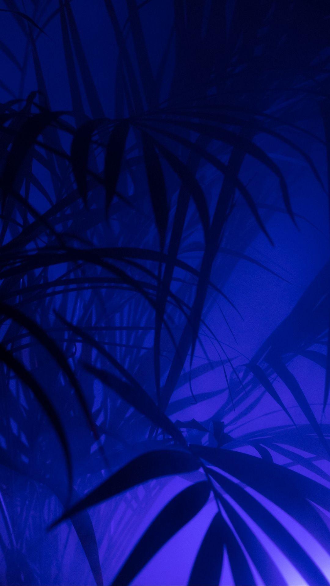 Download 1080x1920 Wallpaper Art Light Purple Fractal Art Neon In 2020 Blue Aesthetic Dark Blue Aesthetic Pastel Light Blue Aesthetic