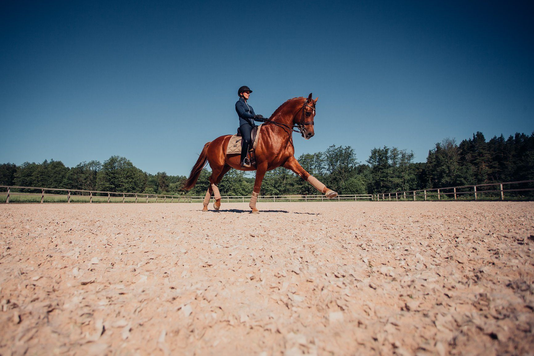 Just So In Love With Equestrian Stockholm Pferde