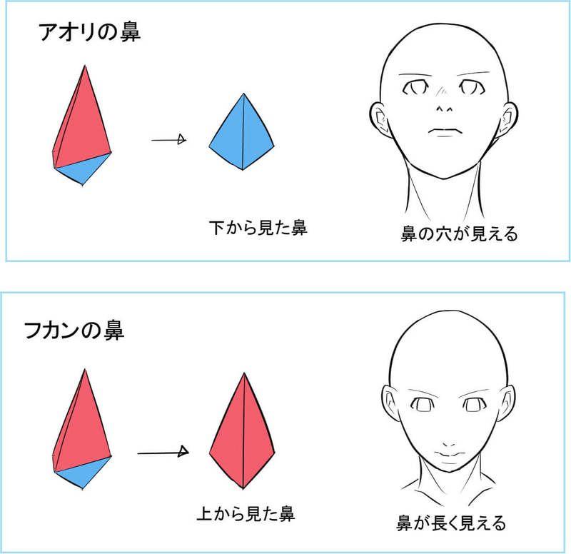 顔の立体感の隠れた主役 鼻の描き方講座 鼻の絵 人物 イラスト 顔