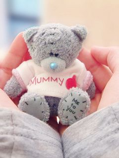 Download Free Cute Teddy Mobile Wallpaper Contributed By Clarkks