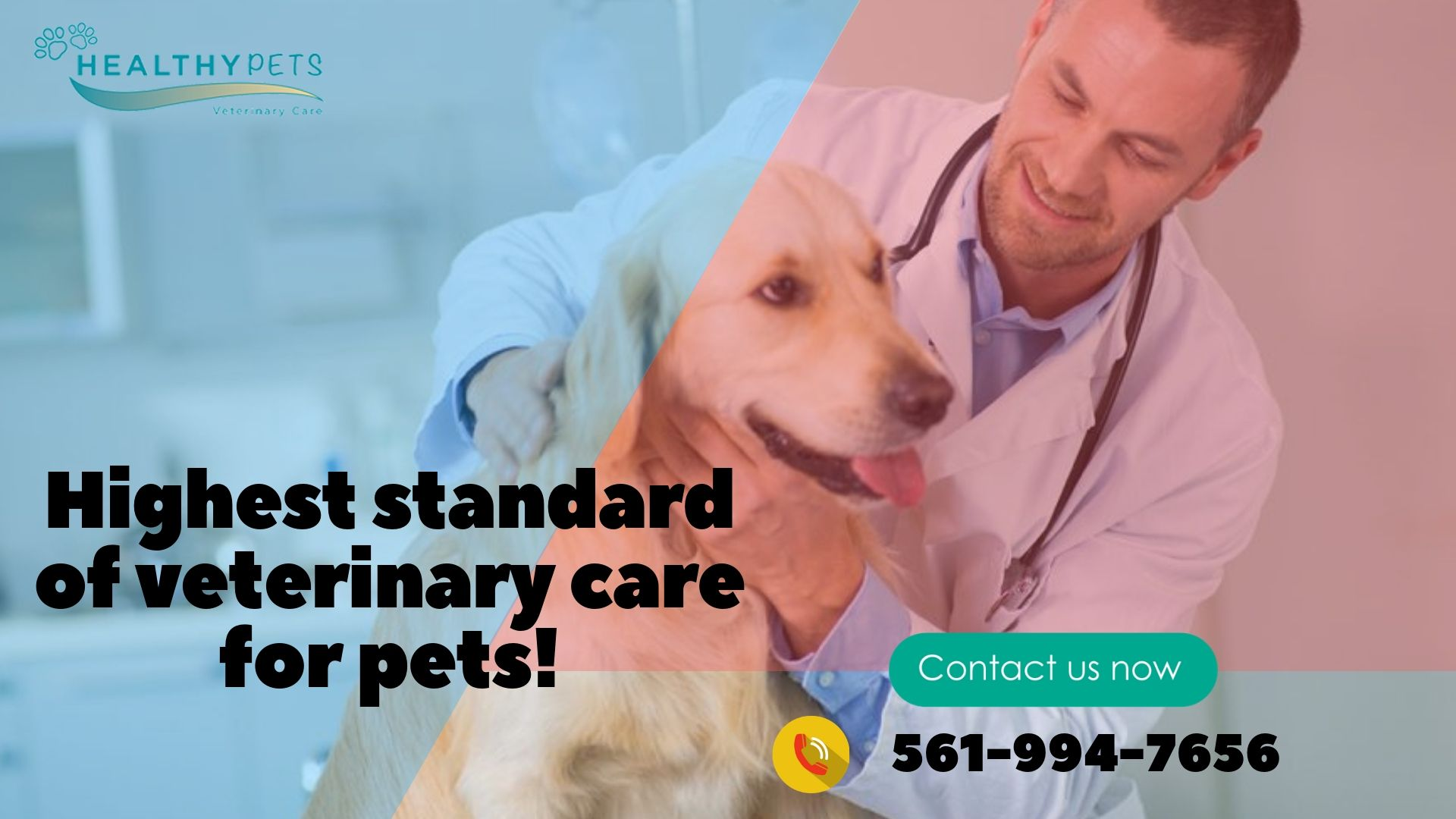 Looking For A Pet Care Services The Veterinarians At Healthy Pets