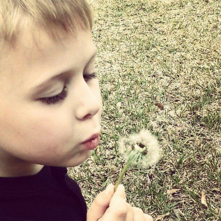 Dane...my sweet boy making a wish on a dandelion
