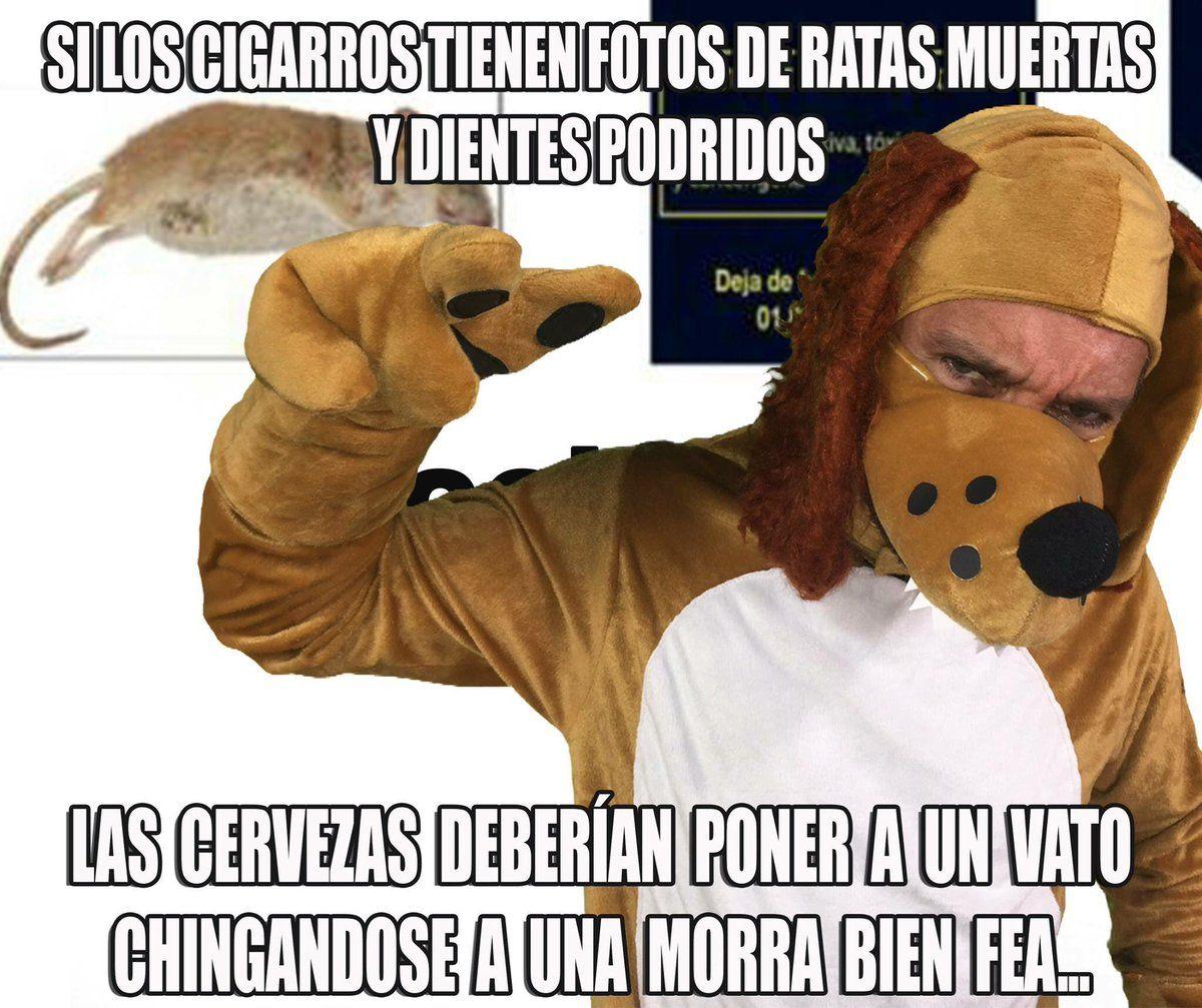 Perro Guarumo Guarumolamejor Twitter Memes