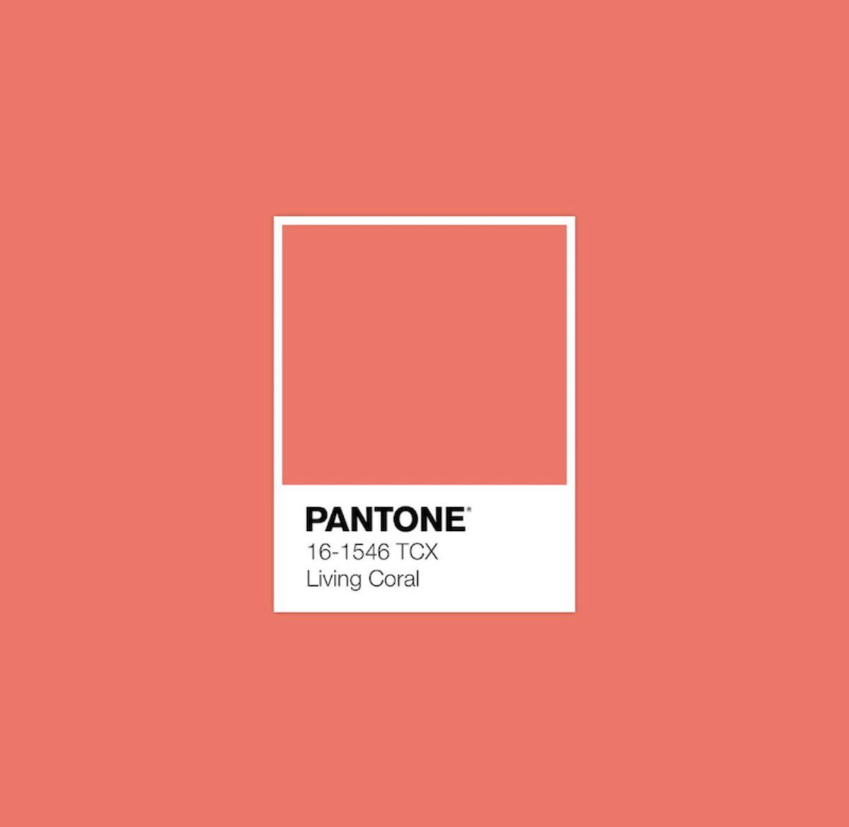 Pantone Colour Of The Year 2019 Living Coral Pantone Color Pantone Colour Palettes Pantone