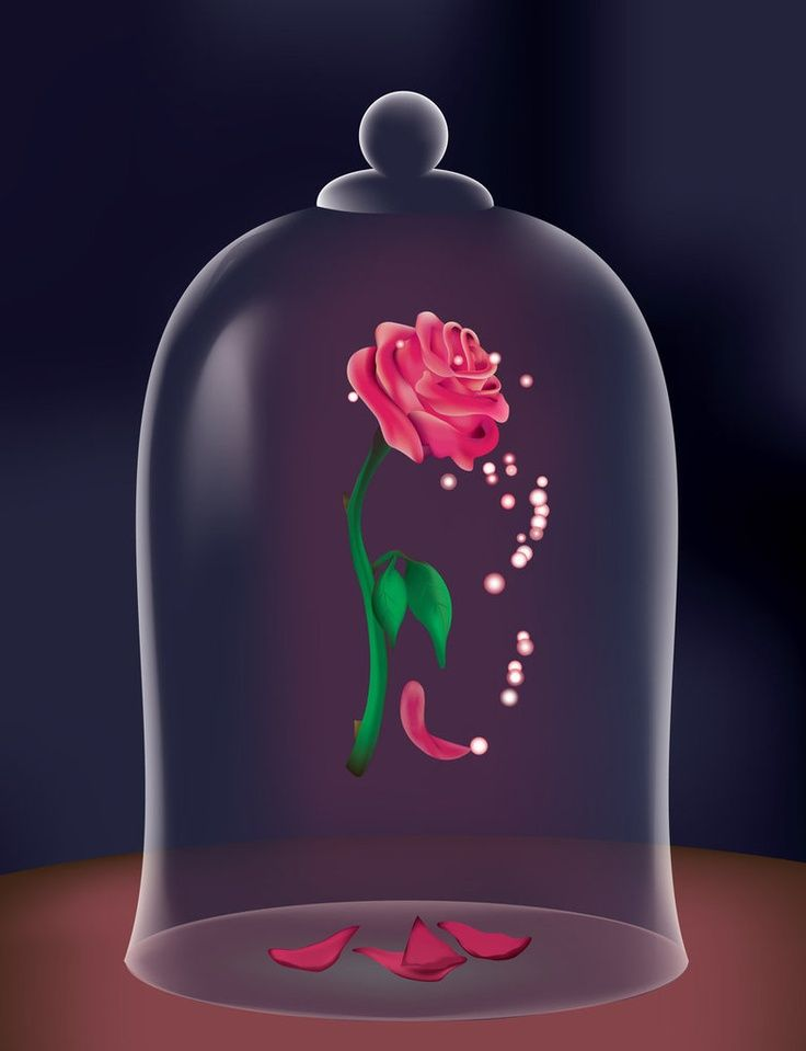 Beauty And The Beast Rose Google Search RZ Pinterest