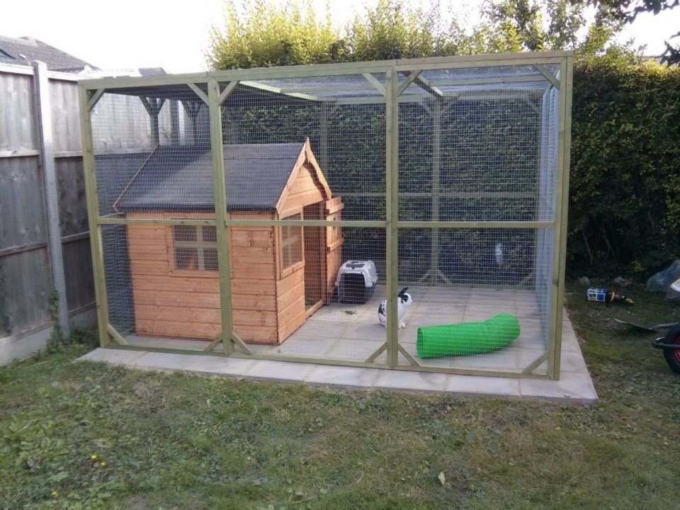 Cute playhouse and aviary for rabbits home home on the for Guinea pig outdoor run plans