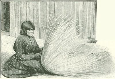 How Indian Baskets Are Made Pomo Indians