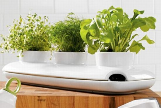 Indoor Gardening Kit Most stylish indoor herb gardens to exercise your green thumb most stylish indoor herb gardens to exercise your green thumb hometone workwithnaturefo
