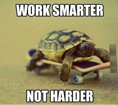 Funny Work Memes Clean Work Smarter Turtle Work Memes