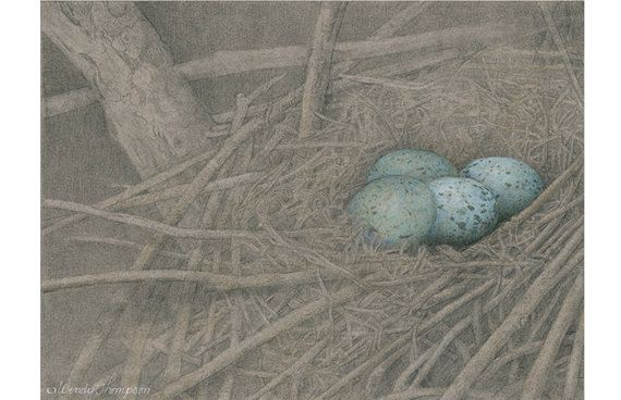 open door pencil drawing. CROW\u0027s Nest ~ Open Edition Print From Original Colored Pencil Drawings Fine Detailed Nature Art, Home Decor, Corvid Art. Door WendyThompsonArt Op Etsy Drawing