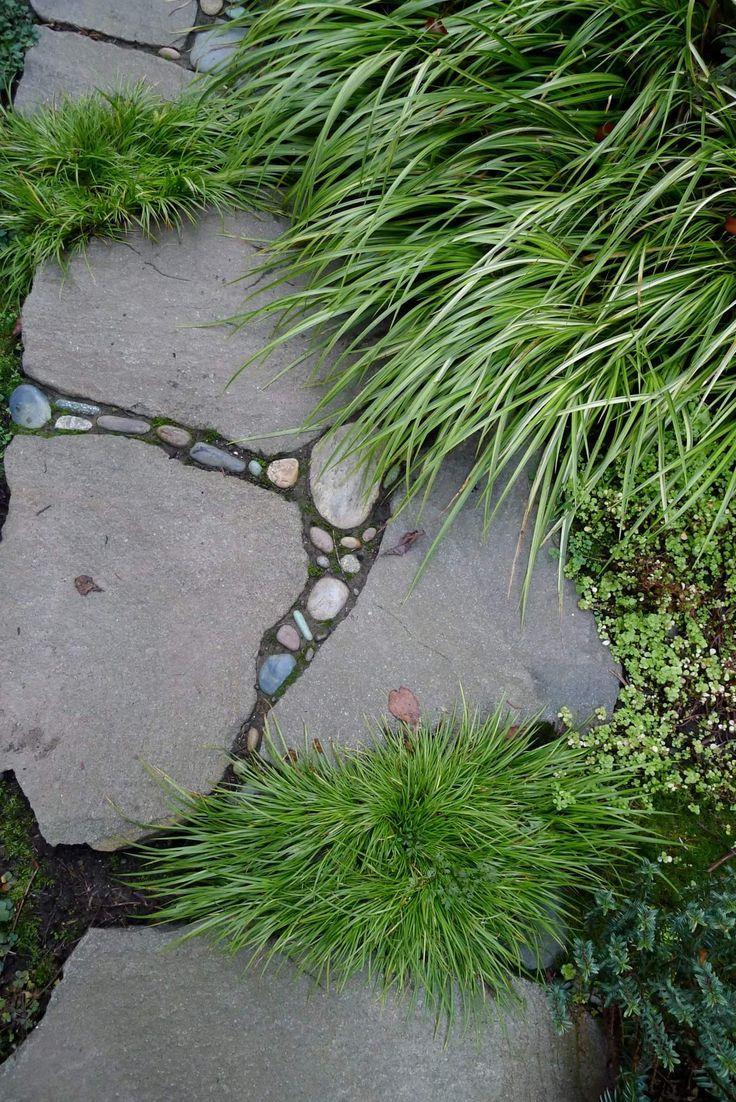 Backyard Koi Pond - River Rock Water Gardens- Water Feature