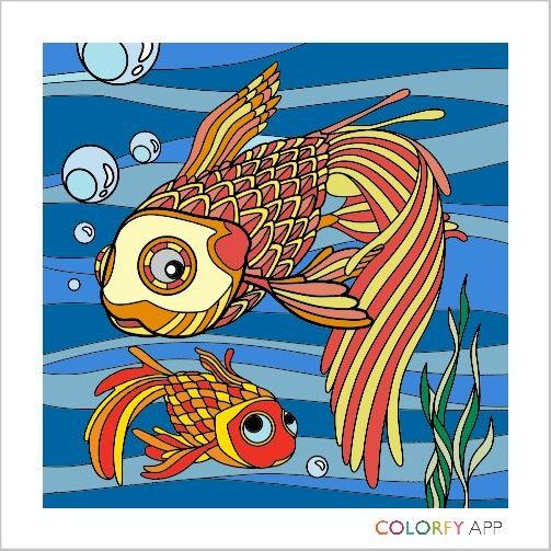 6° Pintura  #Peixe #AppColorfy