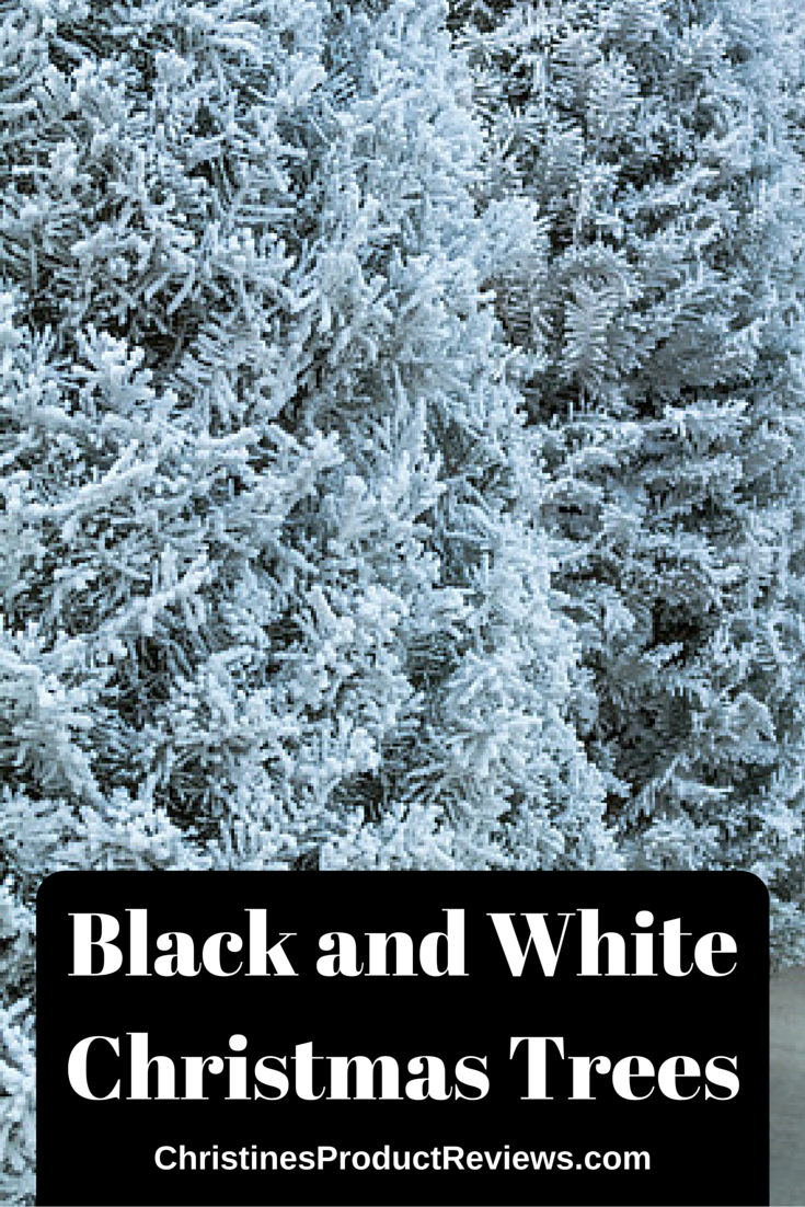 Black Christmas trees are becoming more popular for the holidays, as are white ones. These trees come in many styles and sizes to fit in any area that you have. Decorating a black or white Christmas tree is fun and easy to do. The Christmas lights and decorations stand out so much better hanging on a monochrome Christmas tree than on a green one that you will be amazed at the difference.