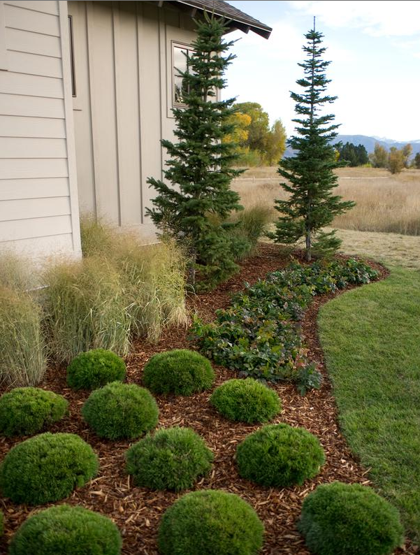 Hgtv Grass Along Edge With Images Front Yard Garden 640 x 480