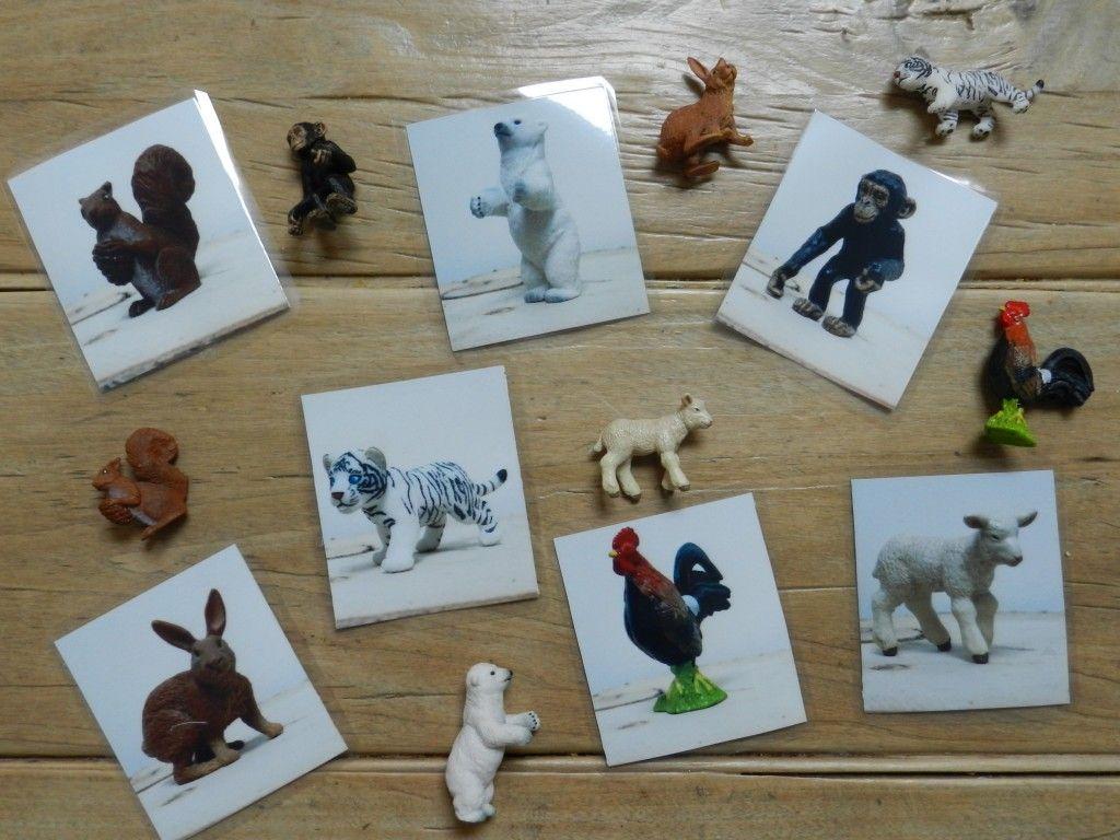 Gut bekannt Loto des animaux montessori à fabriquer | JoliS DIY | Pinterest  SR33