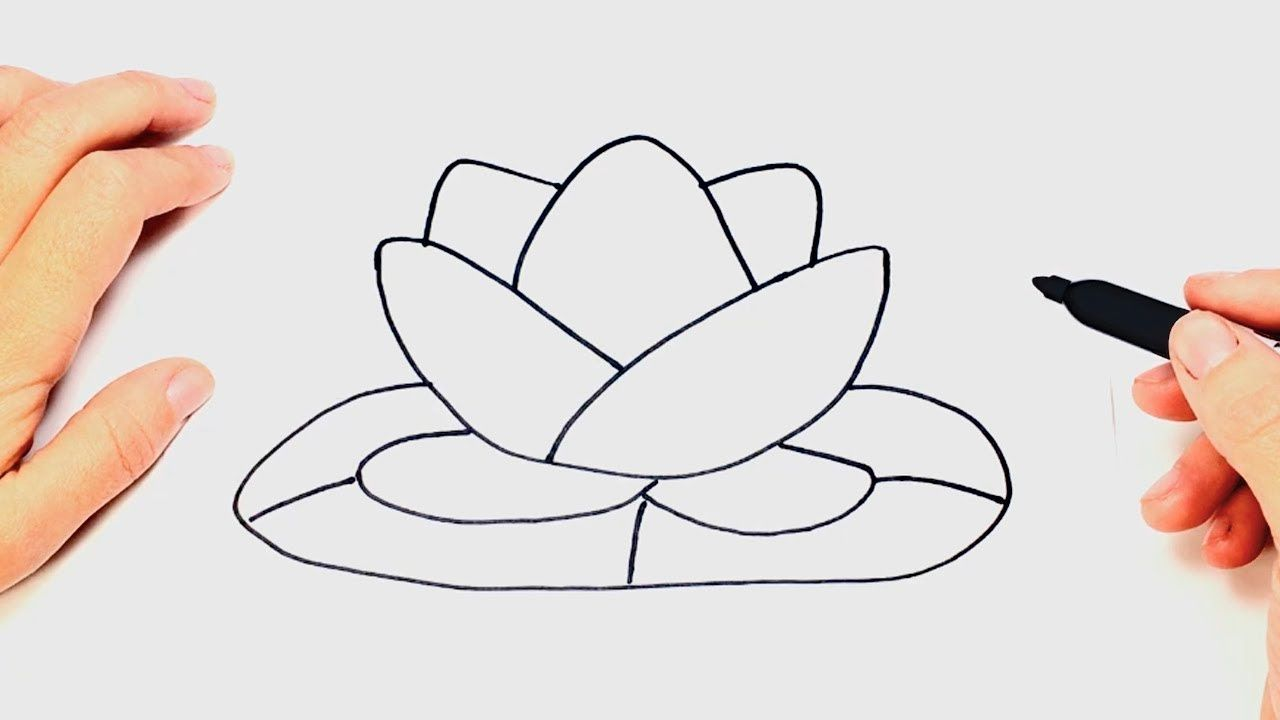 How to draw a lotus flower lotus flower easy draw tutorial how to draw a lotus flower lotus flower easy draw tutorial youtube izmirmasajfo