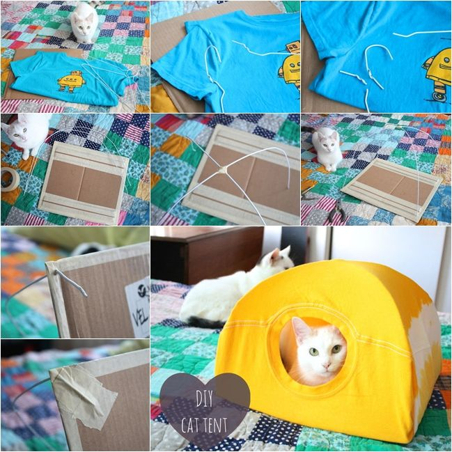 Make a No Sew Cat Tent with an Old T-Shirt and Wire Hangers - http ...