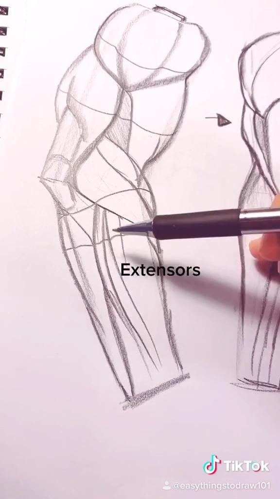 Photo of 1 minute Anatomy Lesson – Arm